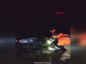 Van'da kaçak avlanan 15 ton 'canlı balık' tekrar suya bırakıldı