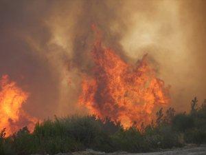 Manavgat'taki orman yangınına havadan ve karadan müdahale sürüyor