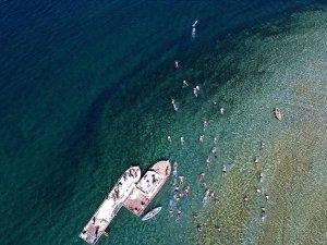 Van Gölü'nde düzenlenen 'Adır Adası'nda Yüzme Festivali' ilgi gördü