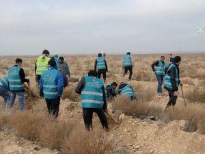 Karaman'da hükümlüler fidan dikti