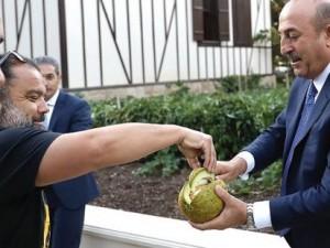 Çavuşoğlu yetiştirdiği kavunları gazetecilere ikram etti